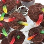 dirt cupcakes with candy worms