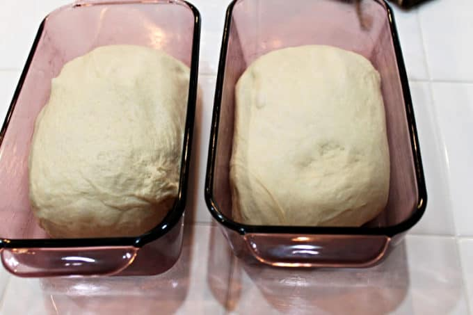 bread in loaf pans