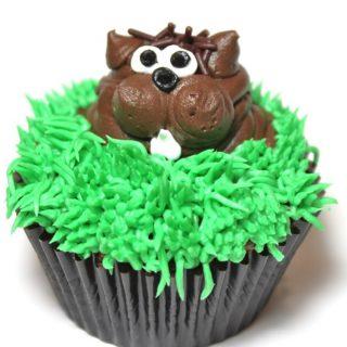 ground hog day cupcakes