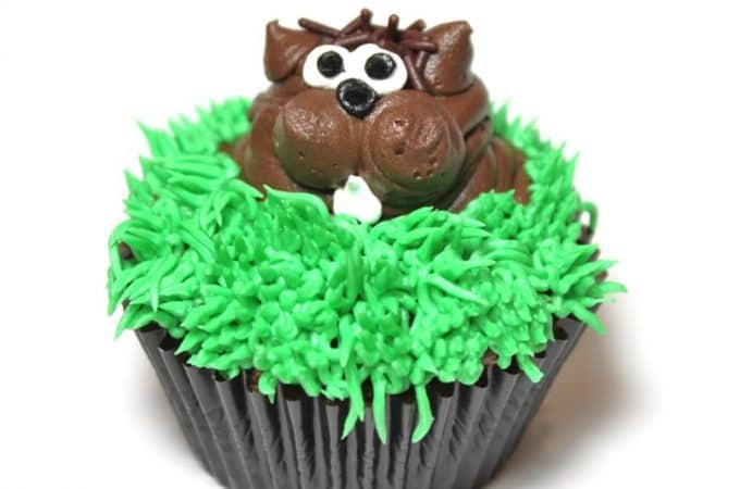 ground hog day cupcakes