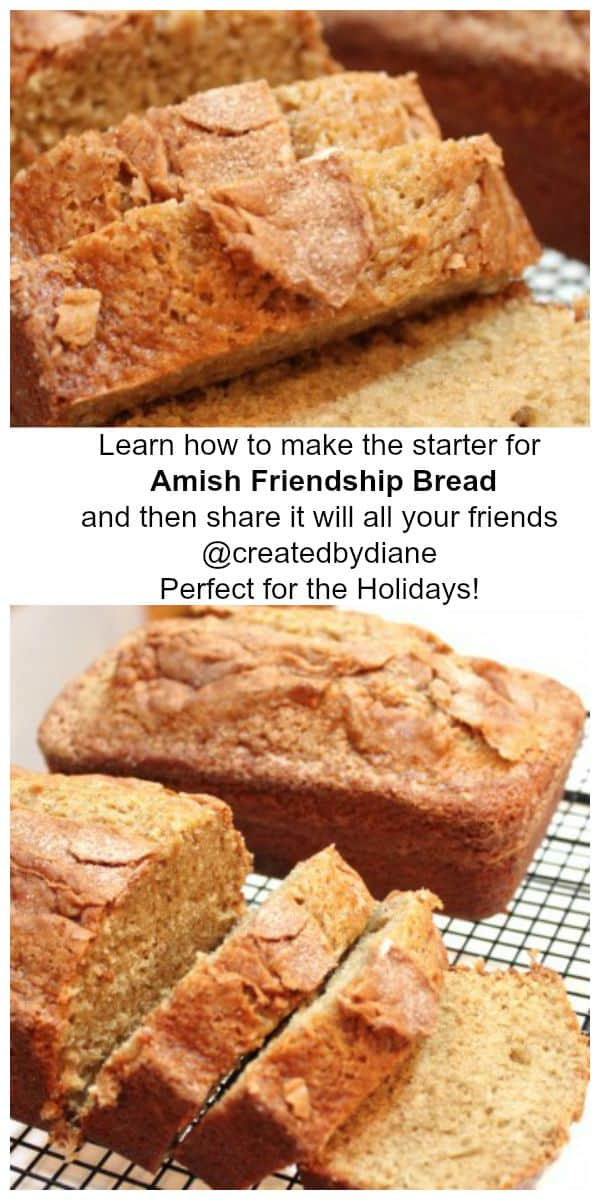 amish friendship starter will have you baking and sharing this delicious bread with all your friends @creaetedbydiane