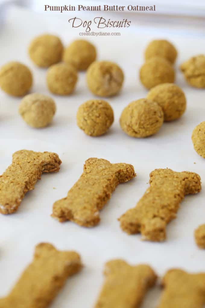dog treats (gluten free) oatmeal pumpkin peanut butter baked treatsJPG