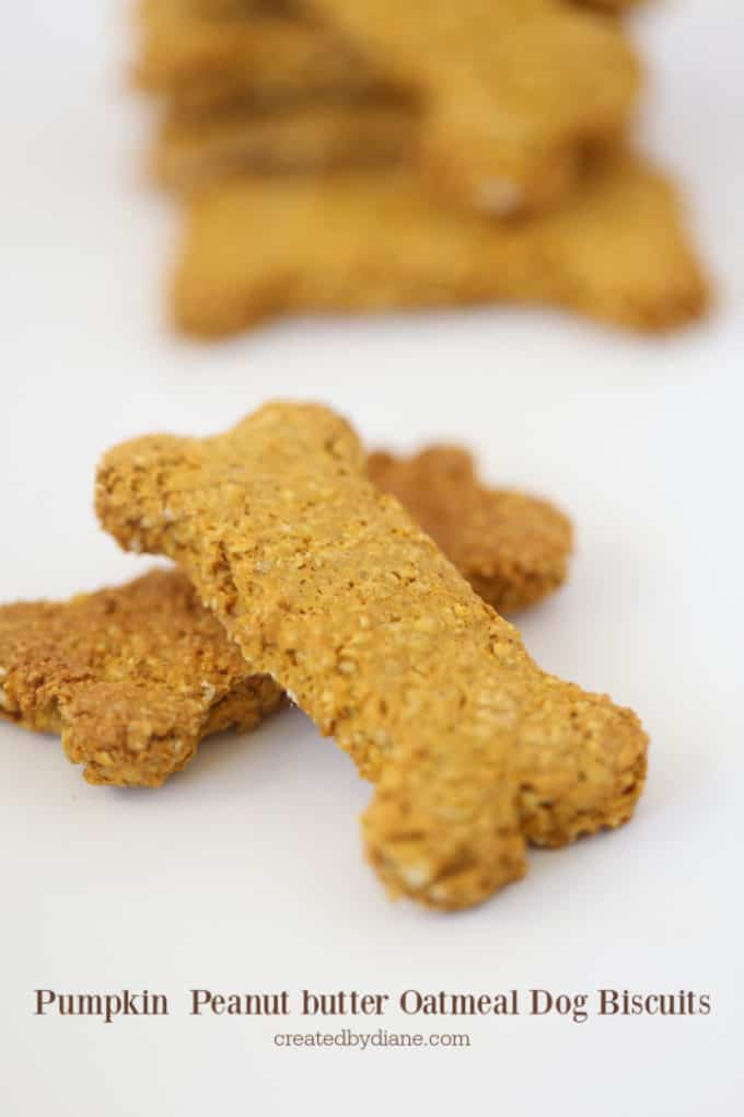 peanut butter pumpkin oatmeal dog treats cut out or rolled and baked createdbydiane.com