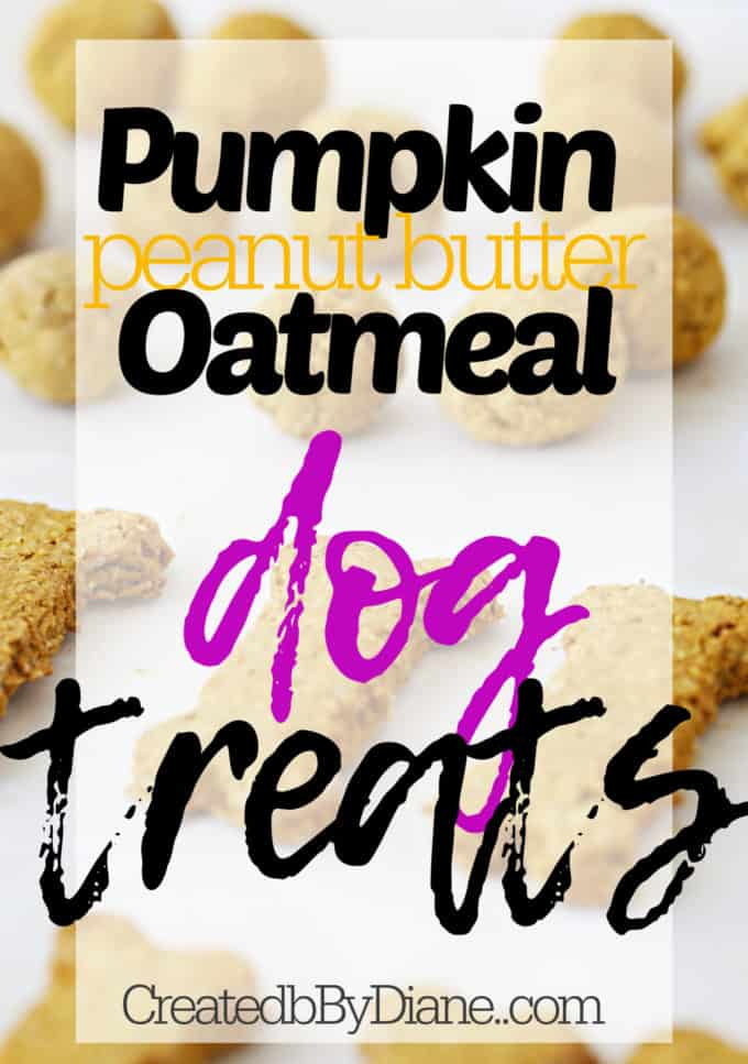 pumpkin peanut butter oatmeal dog treat cookie recipe createdbydiane.com