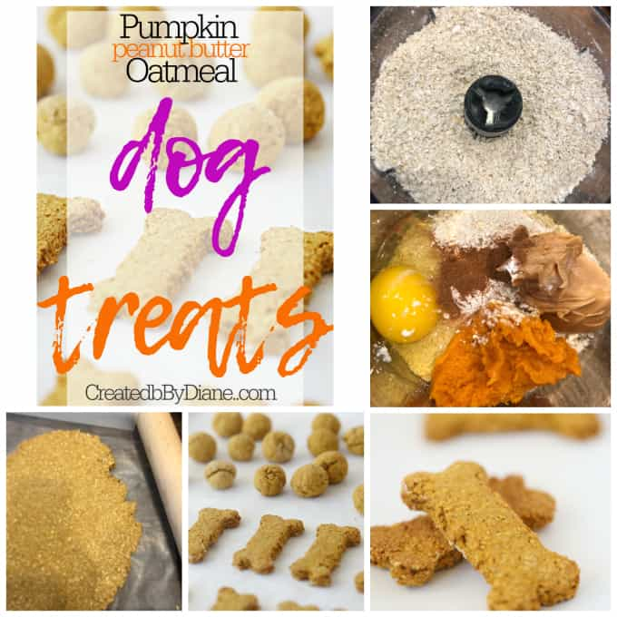 the BEST dog treats createdbydiane.com