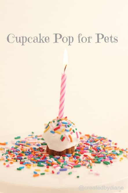 How To Make A No Bake Cake For Your Cat Or Dog