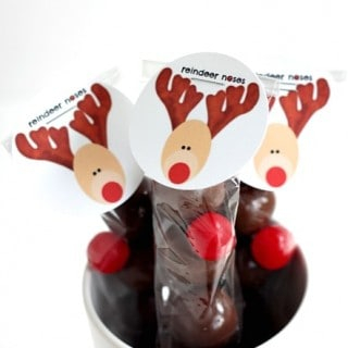 Reindeer Noses (how to and printable)