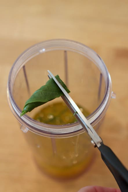 cutting basil with scissors.jpg