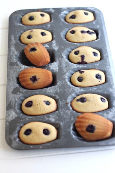 baked Madeleine Scones