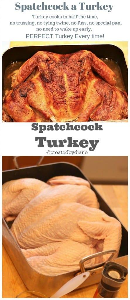 spatchock turkey www.createdby-diane.com