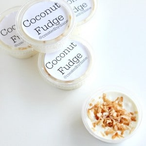 Coconut Fudge with toasted coconut on top from @createdbydiane