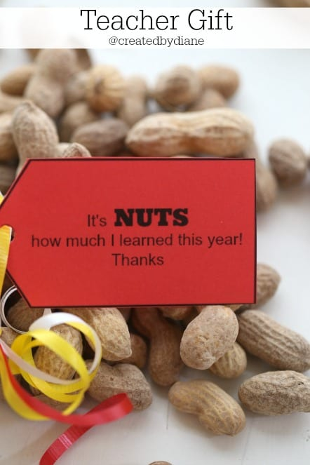 teacher gift @createdbydiane with PRINTABLE It's NUTS how much I learned this year!