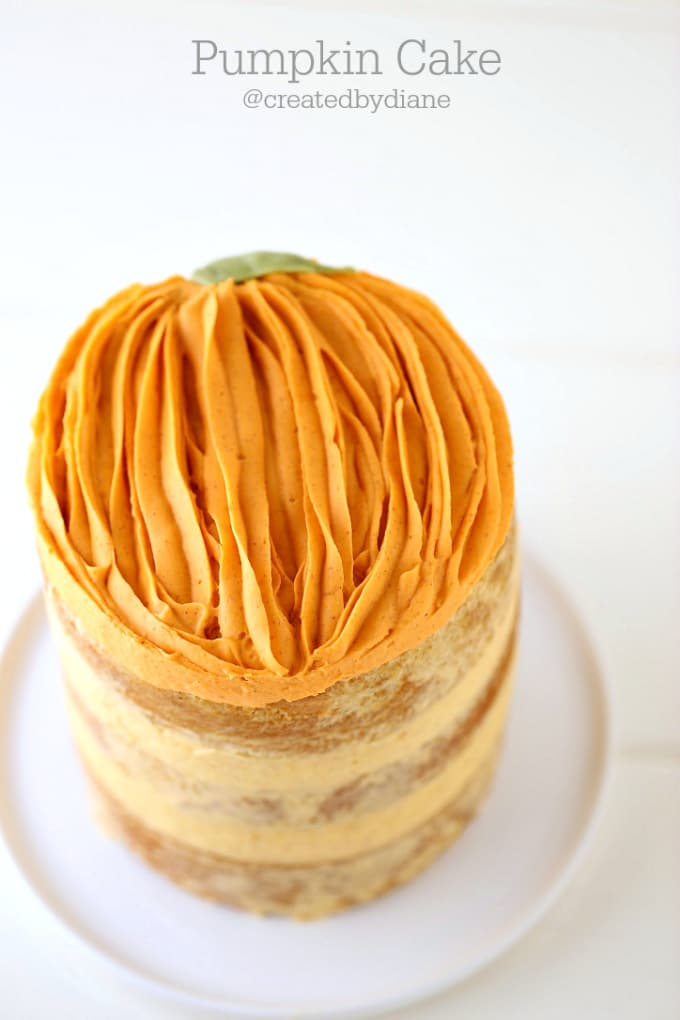 pumpkin-decorated-cake-from-www-createdby-diane-com