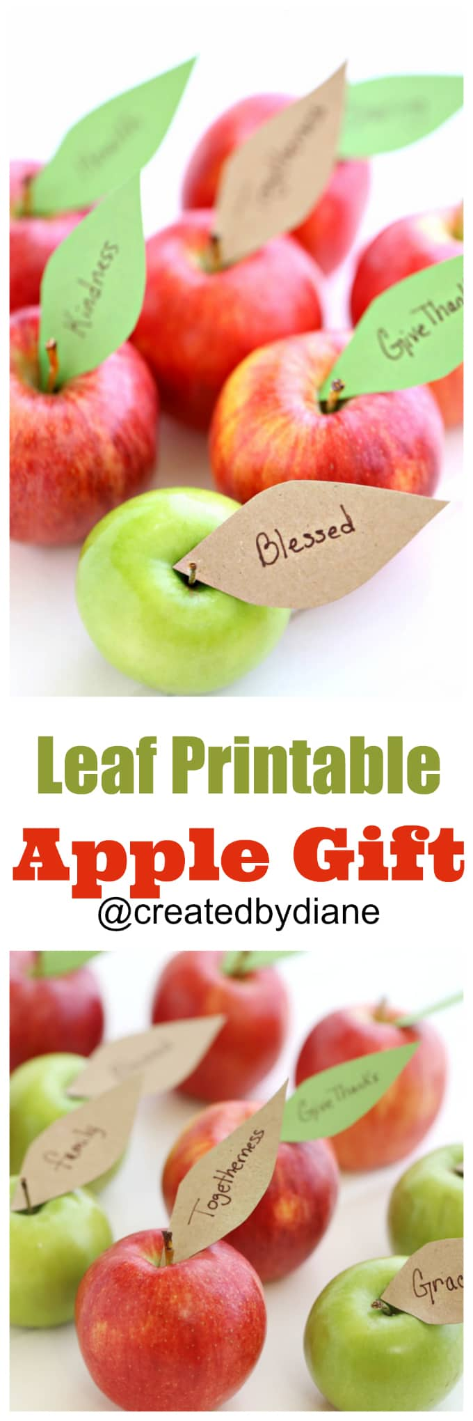image relating to Apples to Apples Cards Printable known as Apples with leaf printable Intended by means of Diane