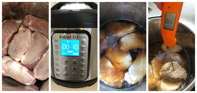 pork teriyaki in pressure cooker