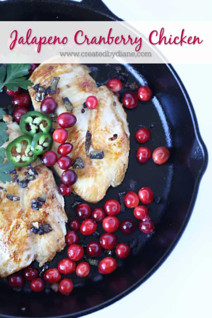 Jalapeno Cranberry Chicken Recipe from www.createdbydiane,com
