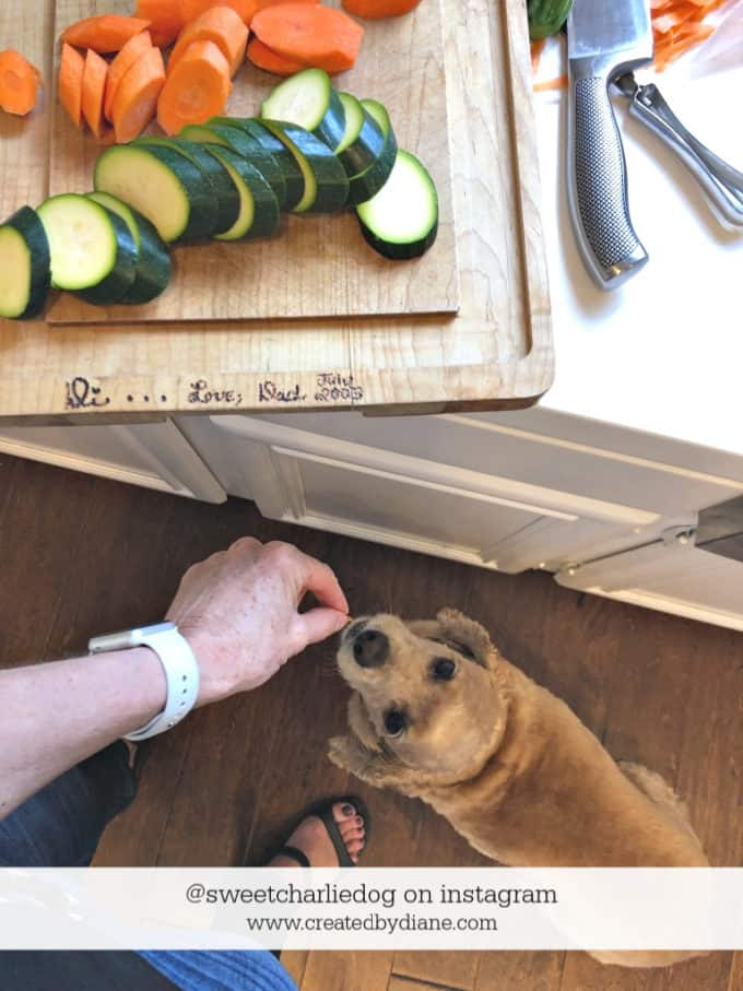 Diane Schmidt food blogger, with dog @sweetcharliedog instagram www.createdbydian
