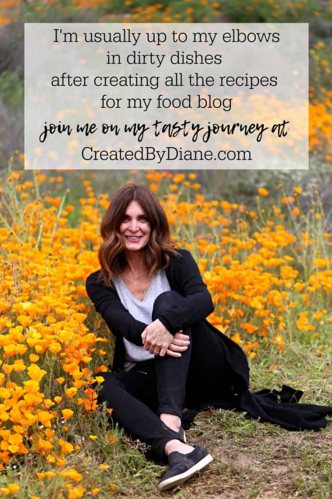 Diane Schmidt food blogger, recipe developer, dishwasher, writer, photographer, online influencer, online publisher, entrepreneur createdbydiane.com