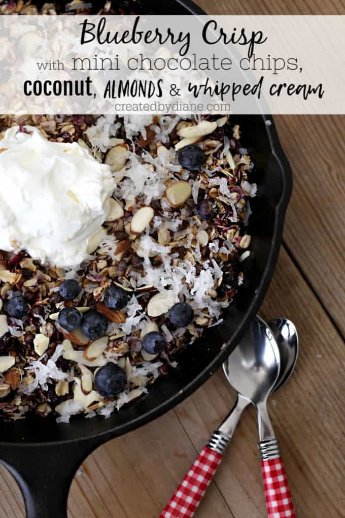 blueberry crisp with chocolate chips, coconut, almonds, whipped cream createdbydiane.com