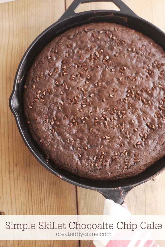Simple Skillet Chocolate Chocolate Chip Cake createdbydiane.com
