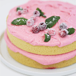 CRANBERRY CAKE with CRANBERRY FROSTING createdbydiane.com